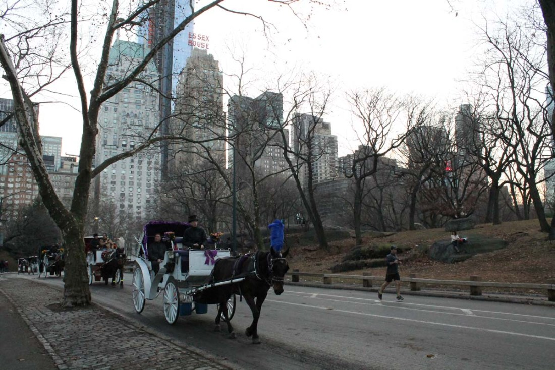 Central Park and the City