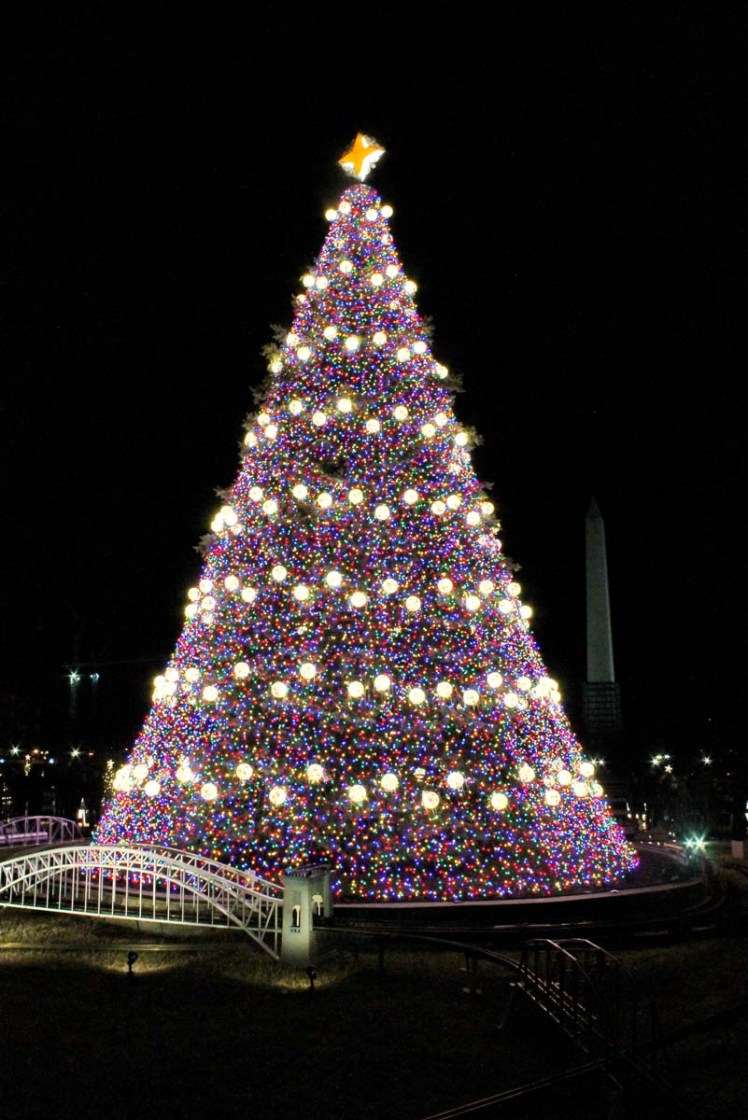The National Christmas Tree, just south of the White House
