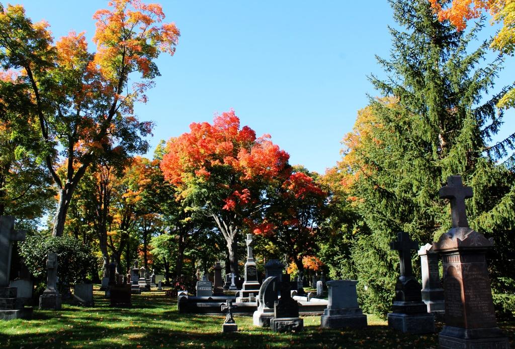 beechwood_cemetery_ottawa_img_8440